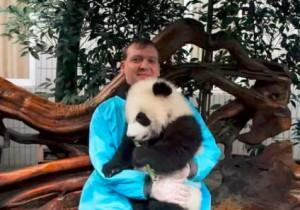 全世界熊猫控的日常:他们为熊猫做了?#30007;?#20107;情? | 世界药丸