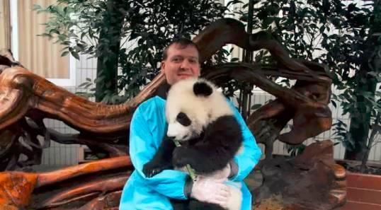 全世界熊猫控的日常:他们为熊猫做了哪些事情? | 世界药丸